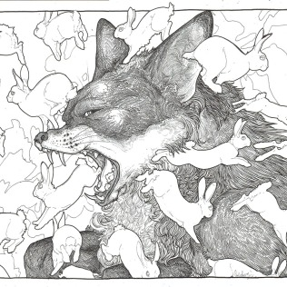 flee fox bw - Candace Breakell